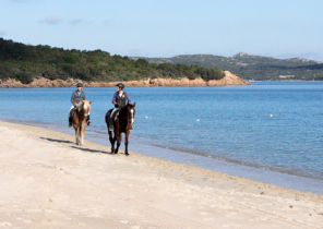 Urlaub & Pferde